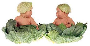غذای کودک حبوبات